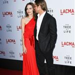 Brad Pitt Angelina Jolie at The Tree of Life premiere in LA  86053