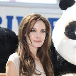 Angelina Jolie at Kung Fu Panda 2 photo call in Cannes 85193