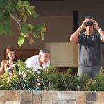 George Clooney to ring in new  year with Stacy Keibler and friends in Mexico  101524