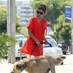 Eva Mendes takes Ryan Gosling's dog to the salon 122486