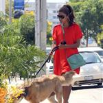 Eva Mendes takes Ryan Gosling's dog to the salon 122487