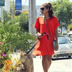 Eva Mendes takes Ryan Gosling's dog to the salon 122488