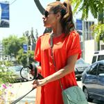 Eva Mendes takes Ryan Gosling's dog to the salon 122497