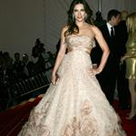 Elizabeth Hurley overdressed at the 2009 Costume Institute Gala 38400