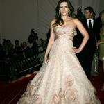 Elizabeth Hurley overdressed at the 2009 Costume Institute Gala 38399