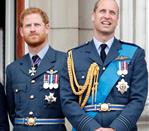 Prince Harry and Prince William 348561