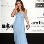 Liz Hurley at the 2009 amfAR event 39629