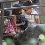 Katie Holmes and her mother Kathleen take Suri to the Central Park Zoo 120356