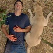 Lost series finale 61706