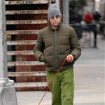 Matthew Broderick walking his dog 17522