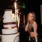 Miley Cyrus's 18th birthday party   73480