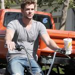 Miley Cyrus and Liam Hemsworth 56803