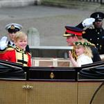 Prince Harry during the carriage procession  84239