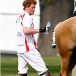Prince Harry at Ascot  84916