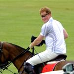 Prince Harry plays in the Audi Polo Challenge 114420