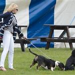 Lupo gets sniffed by another dog at the Audi Polo Challenge 114443