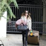 Rachel Bilson heads to North Carolina for Heart of Dixie pilot 81982