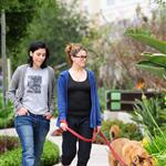 Nikki Reed on a dog walk with friend Sage in LA on Friday 37666