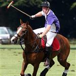 Princes William and Harry at a charity polo match yesterday  122527
