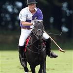 Princes William and Harry at a charity polo match yesterday  122528