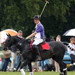 Princes William and Harry at a charity polo match yesterday  122538