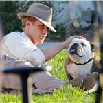 Ryan Gosling on the set of Gangster Squad with a bulldog  94782