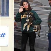 Selena Gomez with new puppy Baylor 97064