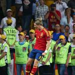Spain celebrates victory at Euro 2012 119481