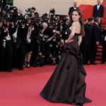 Angelina Jolie and Brad Pitt rule the red carpet at the Tree of Life Cannes premiere  85503