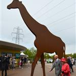 Queen Elizabeth II visits Chester Zoo as part of her tour of the North West in Chester, England 114832