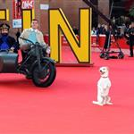Jamie Bell and Milou on the carpet at TinTin Rome premiere  97345