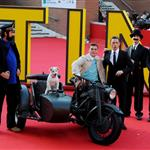 Jamie Bell and Milou on the carpet at TinTin Rome premiere  97346