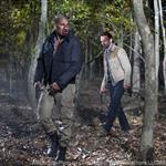 The Walking Dead Season 2 Episode 12  108618