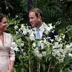 Catherine, Duchess of Cambridge and Prince William visit Singapore Botanical Gardens on day 1 of their Diamond Jubilee tour in Singapore 125699